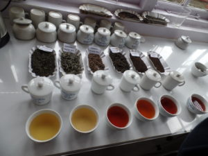 Sorts of Nilgiri Tea